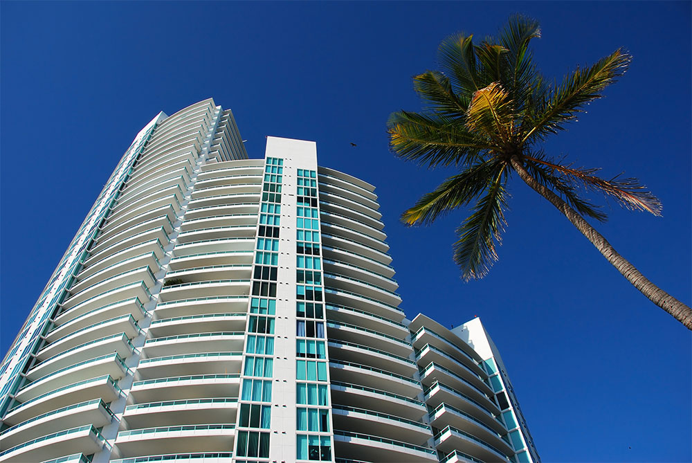 South Beach condo and palm